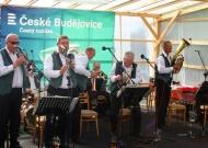 Dub u Ratibořských Hor 16.8.2014